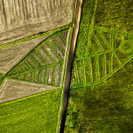 FREE FLOW Jaroslav Koziara foto / photo © W. Pacewicz & I.Burdzanowska